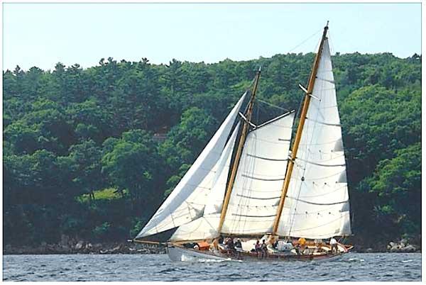 schooner yacht heron