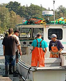 Lobstermen in Rockport Harbor